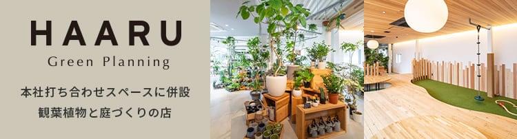 本社打ち合わせスペースに併設 観葉植物と庭づくりの店